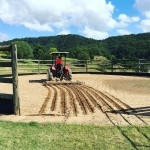 Round yards being prepared for Saturdays riding horseriding kiahpark schoolholidays